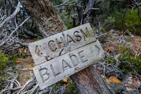 Photograph of a sign pointing to Chasm and Blade